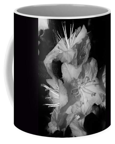 Flora Coffee Mug featuring the photograph Azalea Grouping by Bruce Bley