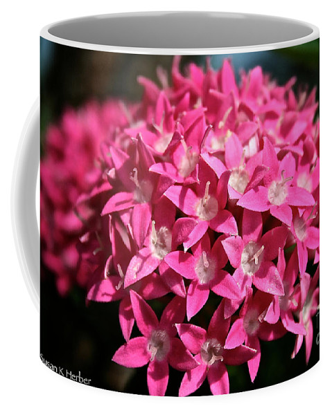 Plant Coffee Mug featuring the photograph Ball Of Stars by Susan Herber