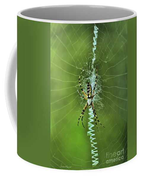 Spider Coffee Mug featuring the photograph Banana Spider With Web by Deborah Benoit