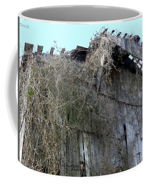 Tn Coffee Mug featuring the photograph Barn From Below by Ericamaxine Price