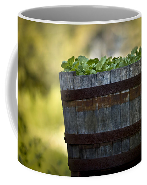 Produce Coffee Mug featuring the photograph Barrel Of Collards by Kim Henderson