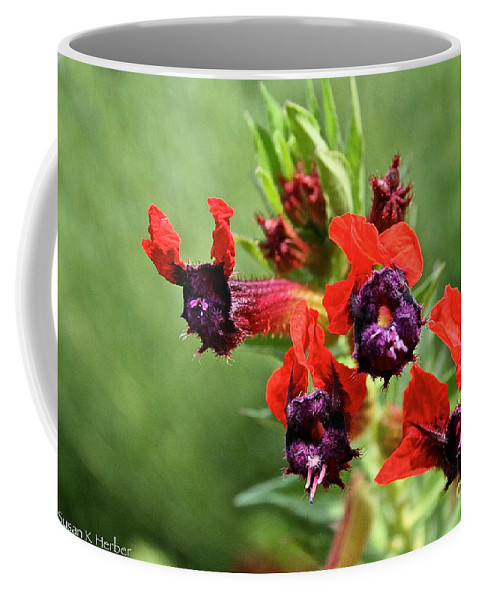 Plant Coffee Mug featuring the photograph Bat Face Cuphea by Susan Herber