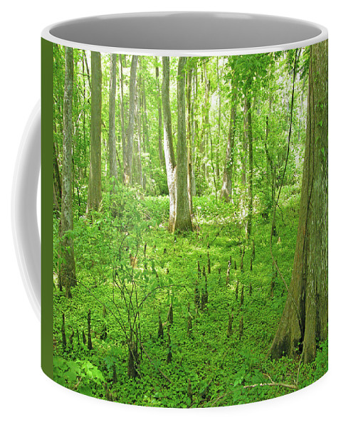 Swamp Coffee Mug featuring the digital art Baton Rouge Blueonnet Swamp La by Lizi Beard-Ward