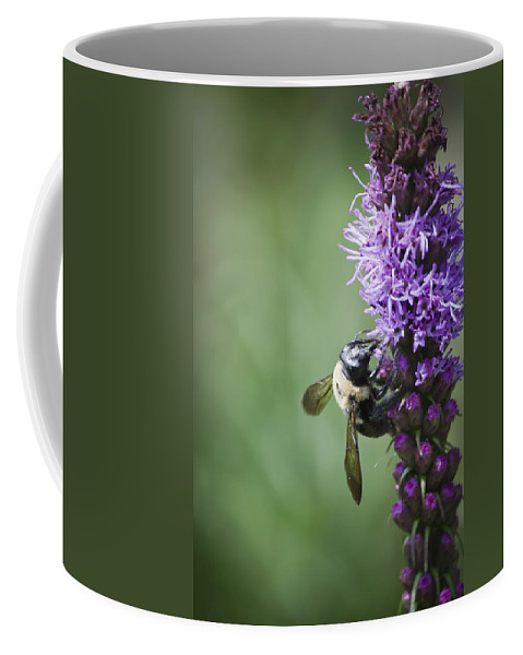 Gayfeather Coffee Mug featuring the photograph Bee On Gayfeather by Teresa Mucha