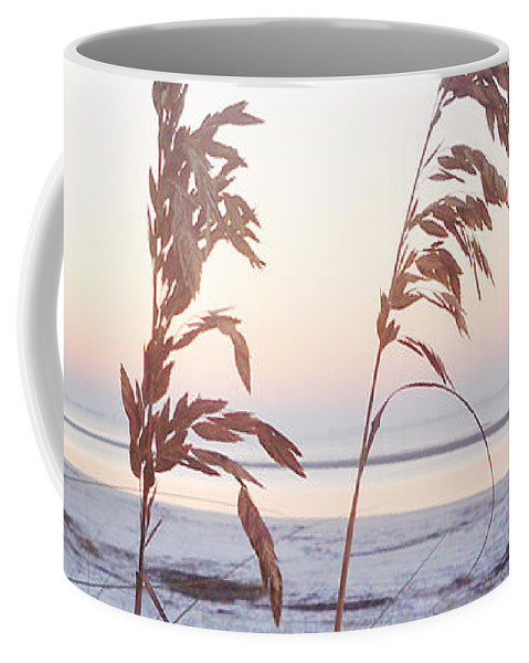 Florida Coffee Mug featuring the photograph Before Day Vanilla Pop by Chris Andruskiewicz
