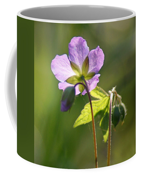 Wildflower Coffee Mug featuring the photograph Behind The Scenes by Bill Pevlor