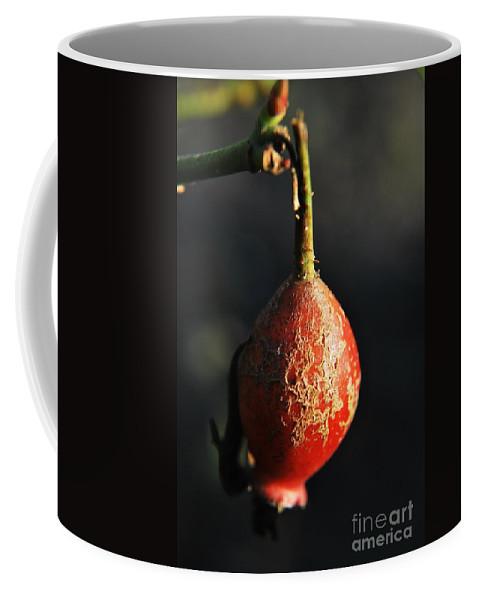Yhun Suarez Coffee Mug featuring the photograph Bent by Yhun Suarez