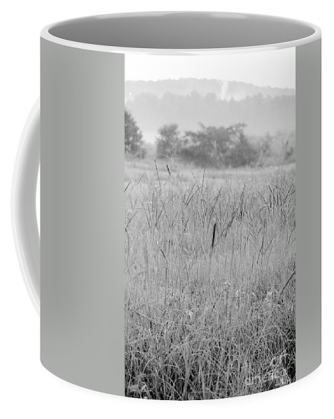 Between Coffee Mug featuring the photograph Between Mountains And Meadows by Maria Urso