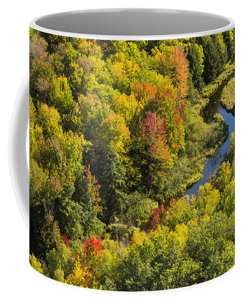 River Coffee Mug featuring the photograph Big Carp River 3 by John Brueske