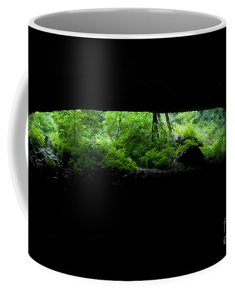 Cave Coffee Mug featuring the photograph Big Mouth Cave, Tennessee by Dante Fenolio