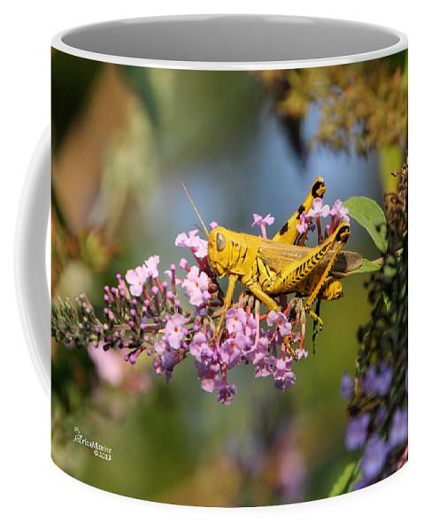 Grasshopper Coffee Mug featuring the photograph Big Yellow Grasshopper by Ericamaxine Price
