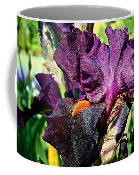 Plant Coffee Mug featuring the photograph Black Iris by Susan Herber