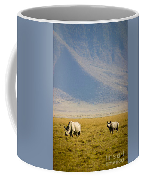 Africa Coffee Mug featuring the photograph Black Rhinos Walking Across The Crater by Darcy Michaelchuk