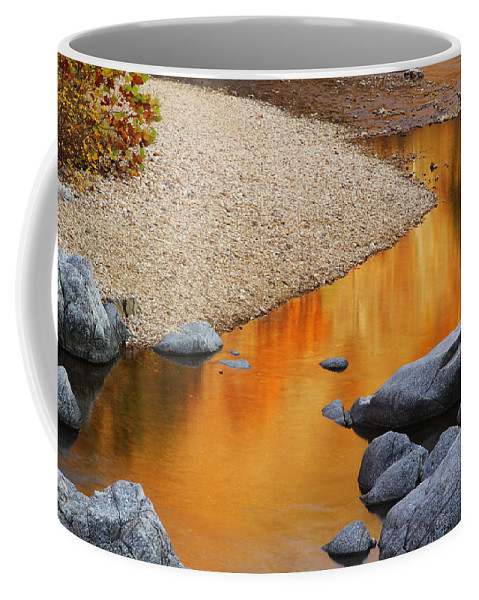 Relections Coffee Mug featuring the photograph Black River Reflections At Johnsons Shut Ins State Park I by Greg Matchick