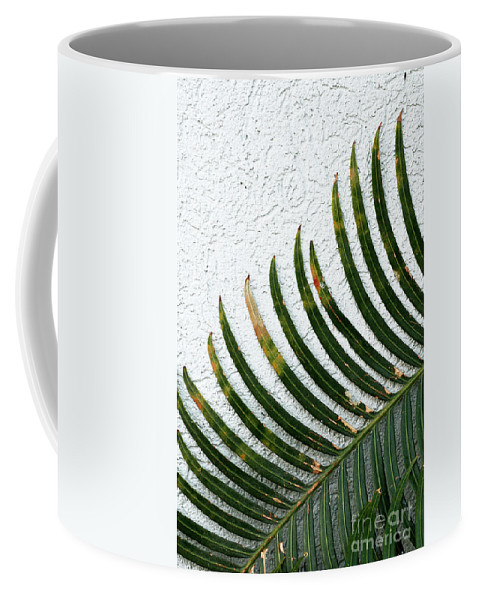 Blades Coffee Mug featuring the photograph Bladed Leaf Against Stucco Wall by Mike Nellums