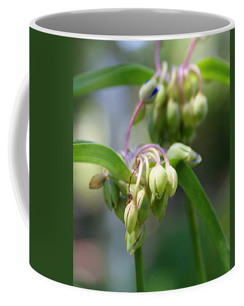 Flowers Coffee Mug featuring the photograph Blooming Life by Jean Haynes