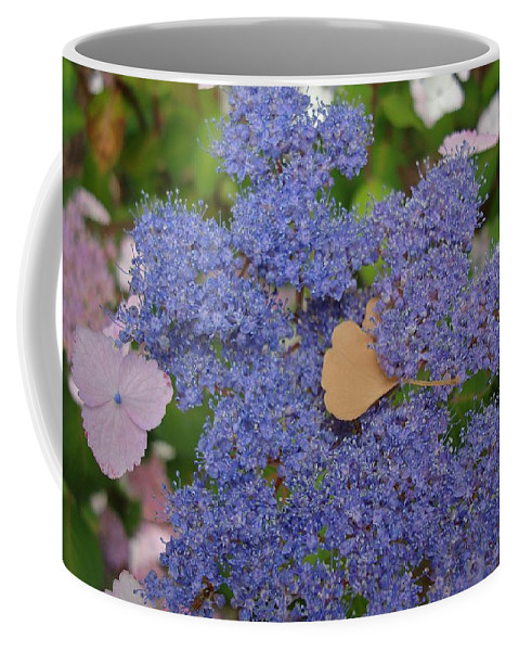 Blue Dot Flowers Coffee Mug featuring the photograph Blue Dot by Joseph Yarbrough