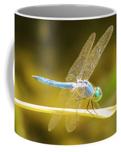 Dragonfly Coffee Mug featuring the photograph Blue Dragonfly by Michelle Cassella
