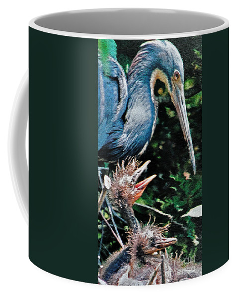 Blue Heron Coffee Mug featuring the photograph Blue Heron Family by Lydia Holly