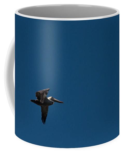 Pelican Coffee Mug featuring the photograph Blue Sky Pelican by Christine Stonebridge