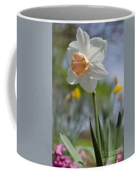 Pink Coffee Mug featuring the photograph Blushing In The Garden by Jim And Emily Bush