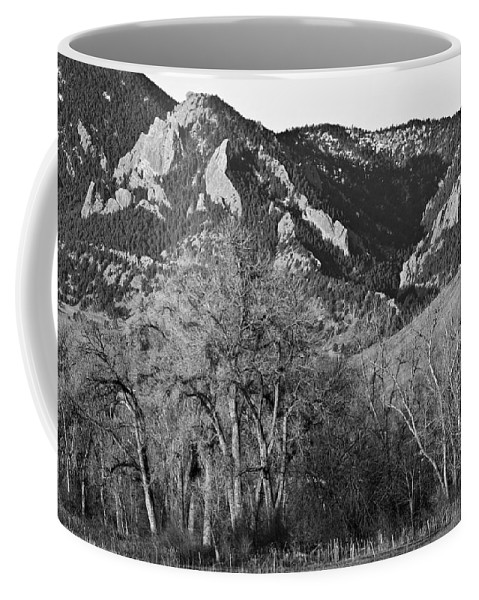 Flairons Coffee Mug featuring the photograph Boulder Colorado Front Range Ncar View by James BO Insogna