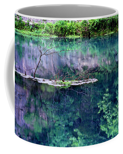 Reflections Coffee Mug featuring the photograph Branch And Reflections At Alley Spring State Park by Greg Matchick