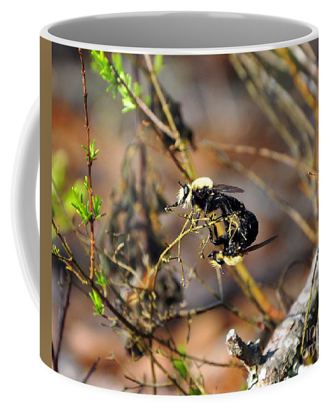 Bees Mating Coffee Mug featuring the photograph Breeding Bees by Al Powell Photography USA
