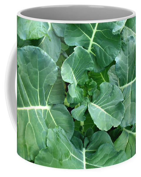 Fresh Coffee Mug featuring the photograph Broccoli Floret Forming by Connie Fox