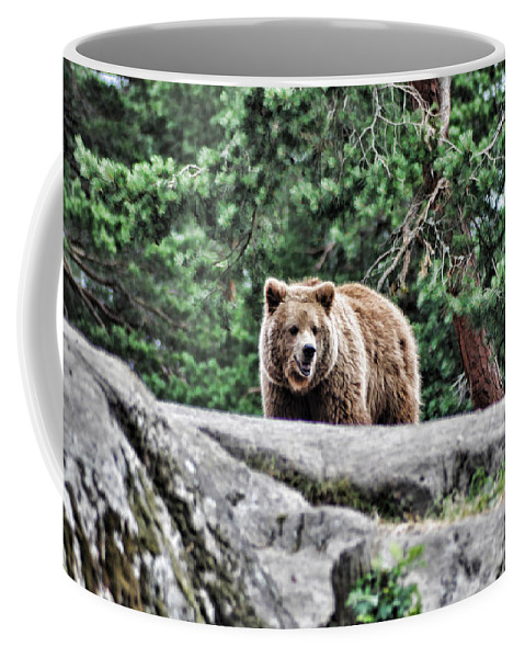 Bear Coffee Mug featuring the painting Brown Bear 209 by Dean Wittle