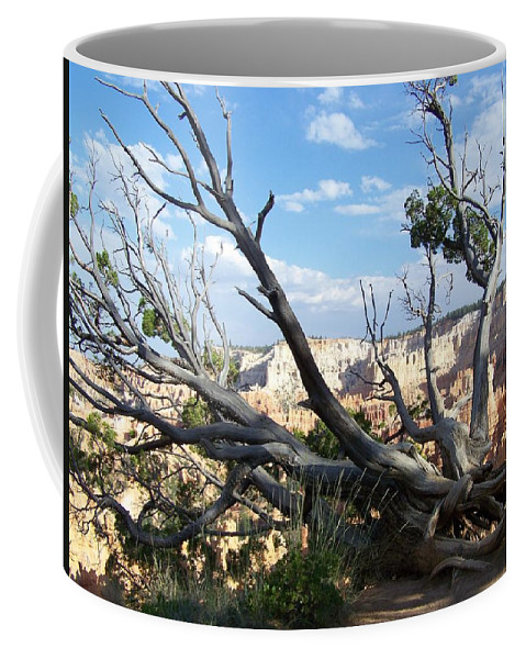Bryce Canyon Coffee Mug featuring the photograph Bryce Canyon by Dany Lison