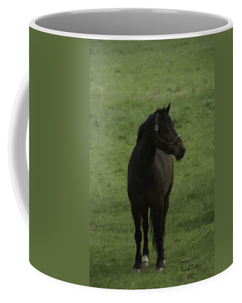 Horse Coffee Mug featuring the photograph Bryzgalov by Trish Tritz