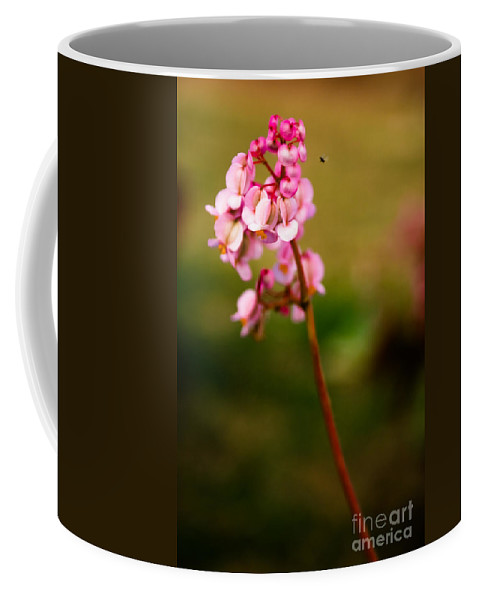 Flower Coffee Mug featuring the photograph Bug And Bud Love by Syed Aqueel