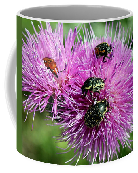 Bug Coffee Mug featuring the photograph Bugfest by Betty Northcutt