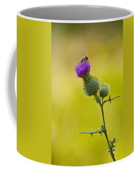 Art Coffee Mug featuring the photograph Bull Thistle With Bumble Bee by Randall Nyhof