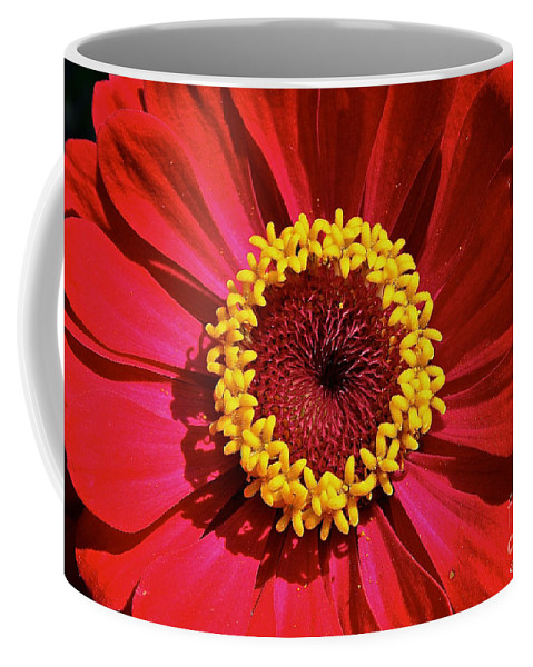 Outdoors Coffee Mug featuring the photograph Bullseye by Susan Herber