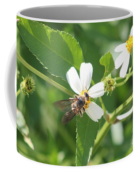 Bumble Bee Coffee Mug featuring the photograph Bumble Bee 1 by Michelle Powell