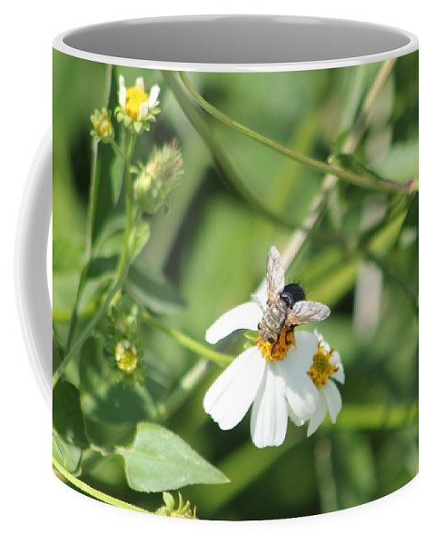 Bumble Bee Coffee Mug featuring the photograph Bumble Bee 2 by Michelle Powell