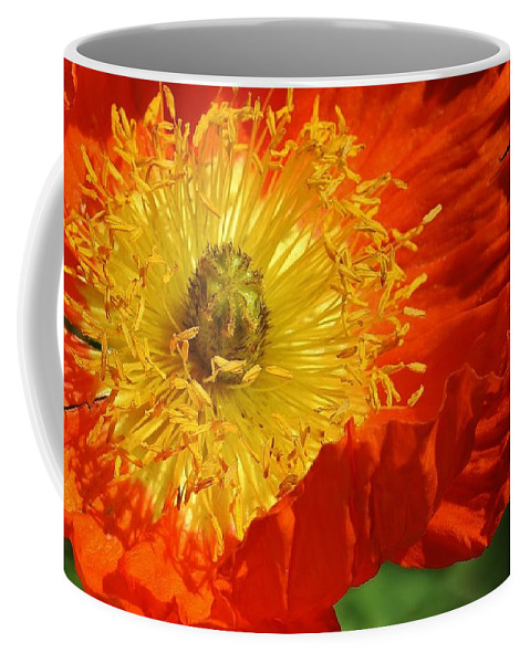 Flora Coffee Mug featuring the photograph Bursting Peony by Bruce Bley