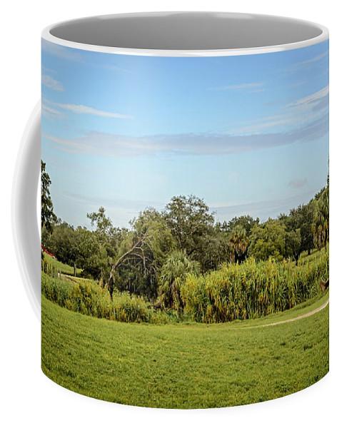 Landscape Coffee Mug featuring the photograph Busch Gardens Landscape by Carol Bradley