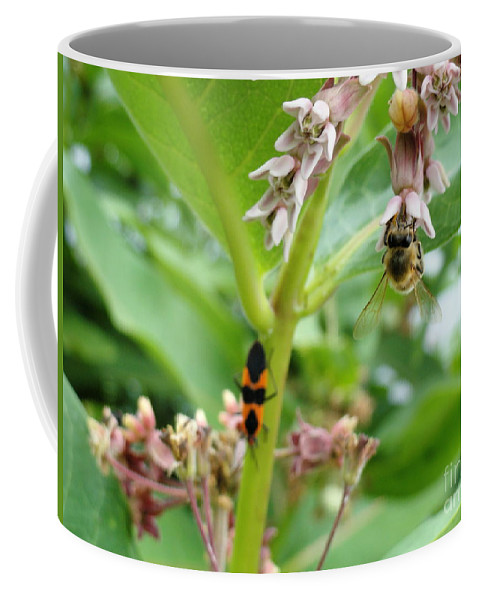 Holmesbrook Photographs Coffee Mug featuring the photograph Busy Bodies by Trish Hale