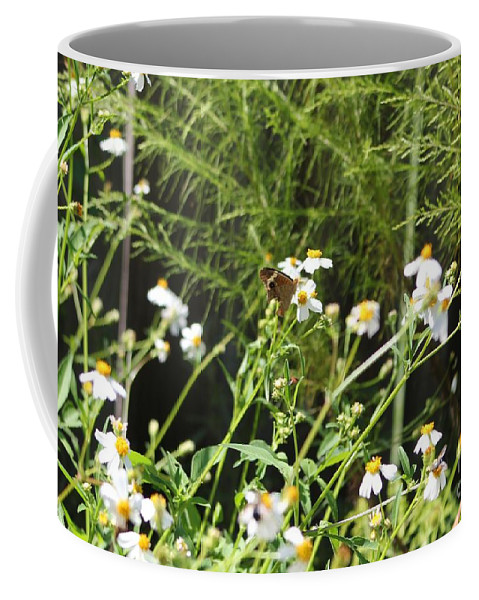 Butterfly Coffee Mug featuring the photograph Butterfly 1 by Michelle Powell