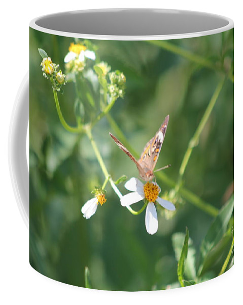Butterfly Coffee Mug featuring the photograph Butterfly 22 by Michelle Powell