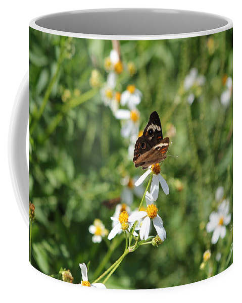 Butterfly Coffee Mug featuring the photograph Butterfly 23 by Michelle Powell
