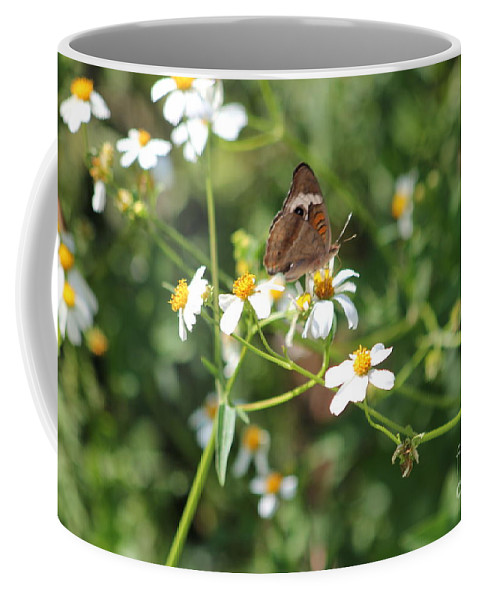 Butterfly Coffee Mug featuring the photograph Butterfly 24 by Michelle Powell