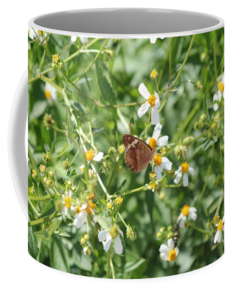 Butterfly Coffee Mug featuring the photograph Butterfly 31 by Michelle Powell