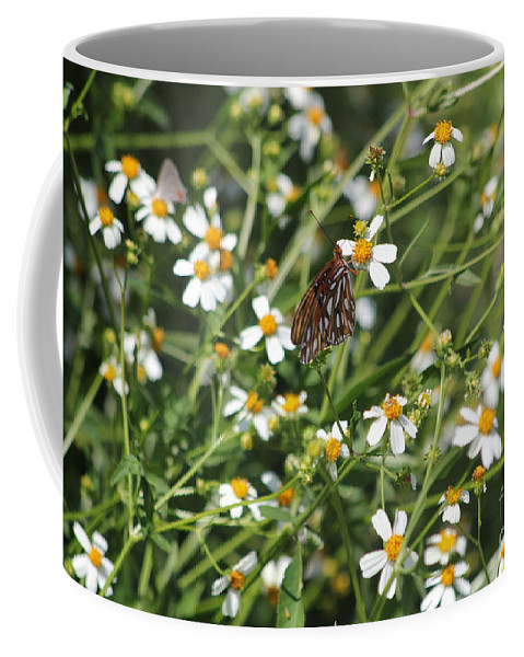 Butterfly Coffee Mug featuring the photograph Butterfly 35 by Michelle Powell