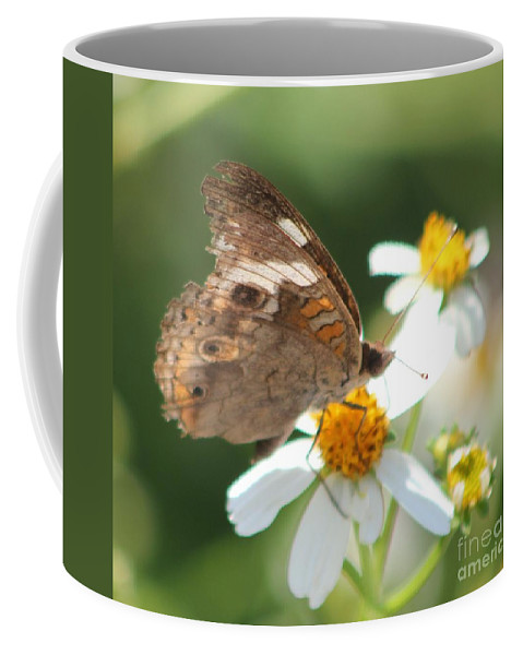 Butterfly Coffee Mug featuring the photograph Butterfly 39 by Michelle Powell
