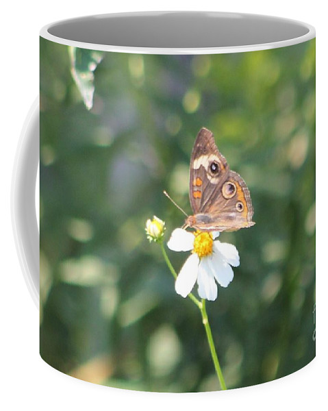 Butterfly Coffee Mug featuring the photograph Butterfly 42 by Michelle Powell