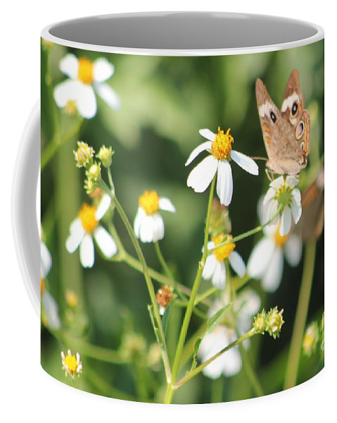 Butterfly Coffee Mug featuring the photograph Butterfly 44 by Michelle Powell
